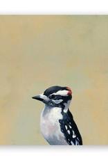 Wings on Wood - Downy Woodpecker