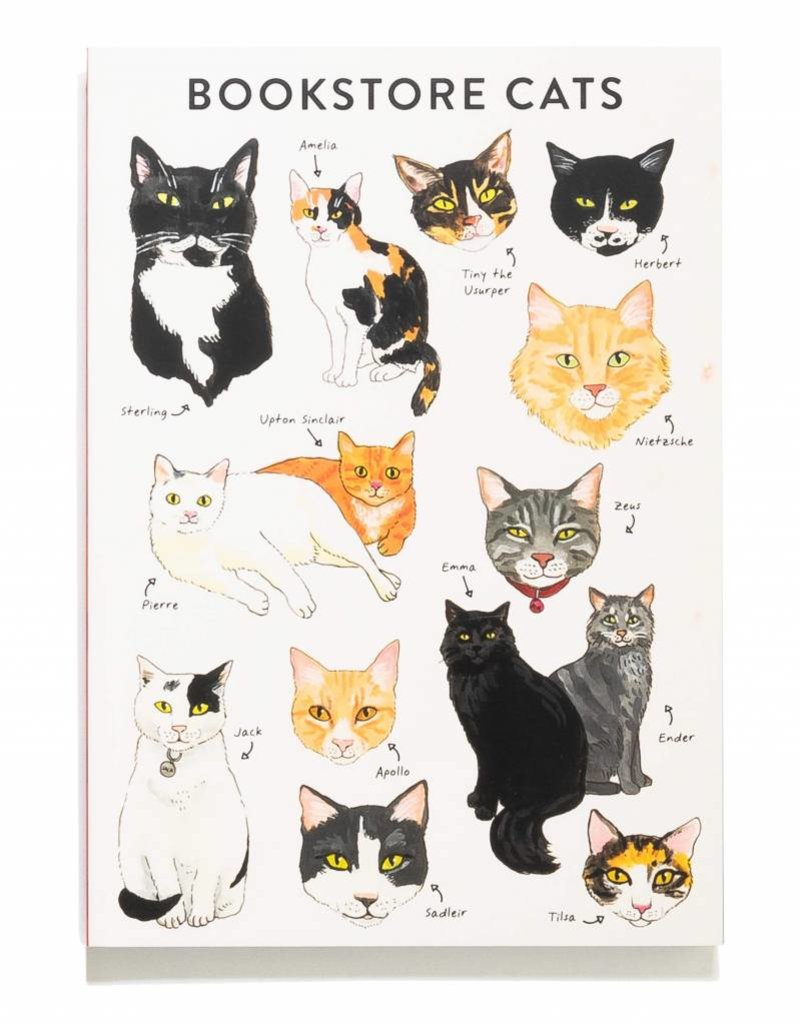 Chronicle Books Bookstore Cats Journal