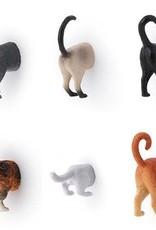 Kikkerland Cat Butt Magnets - Set of 6