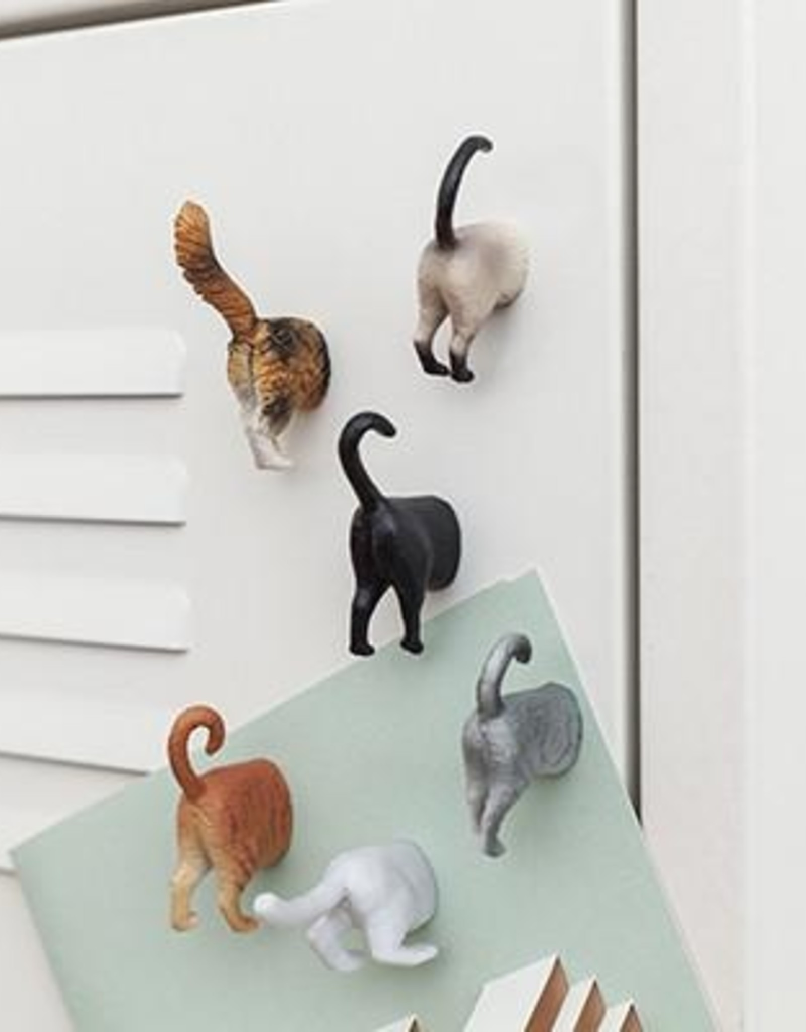 Cat Butt Magnets - Set of 6