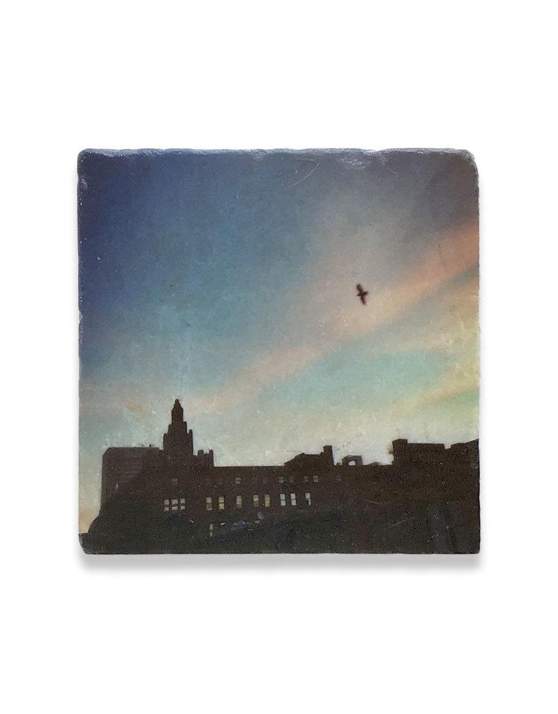 Steve Duque Skyline with Bird Coaster