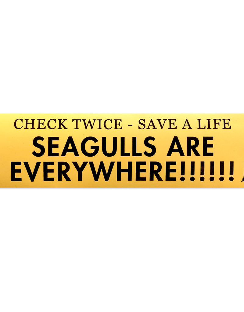 Frog & Toad Design Seagulls Are Everywhere Bumper Sticker