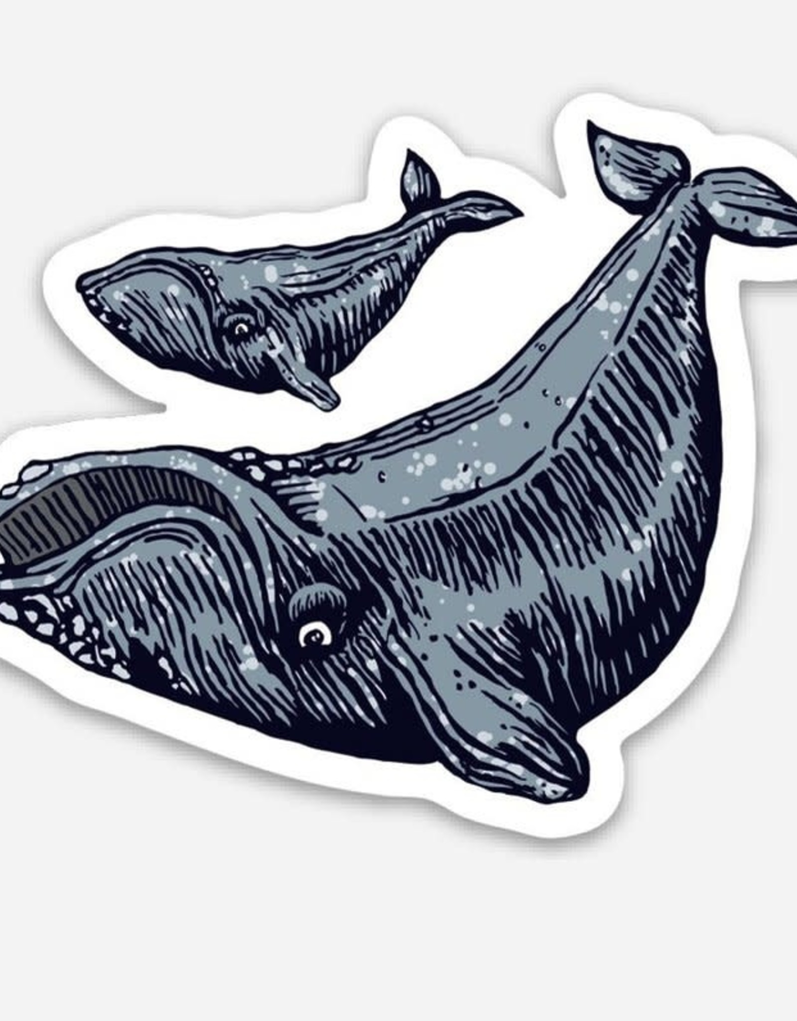 Spofford Press Bowhead Whales Vinyl Sticker