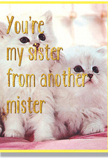 Smitten Kitten Sister from Another Mister Greeting Card