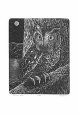Screech Owl Wood Engraving