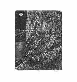 Spofford Press Screech Owl Wood Engraving