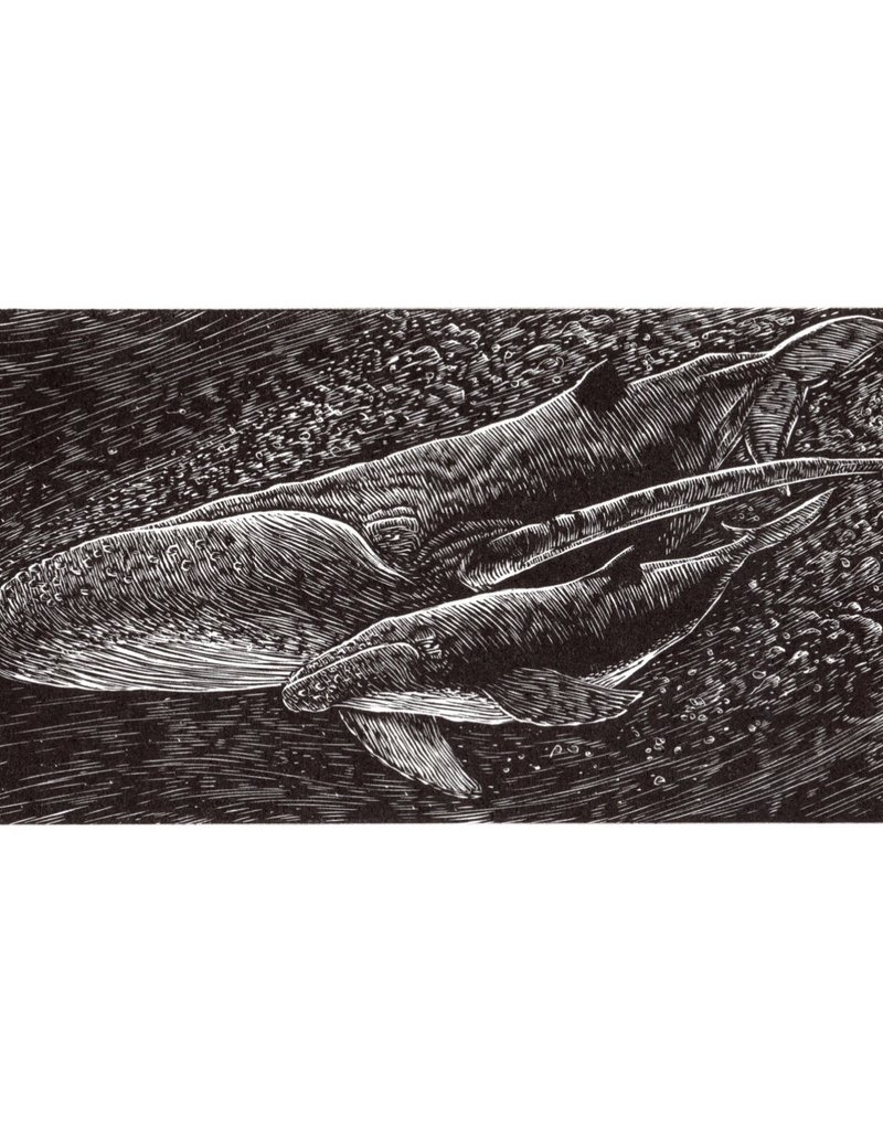 Spofford Press Mother & Calf Whales Wood Engraving
