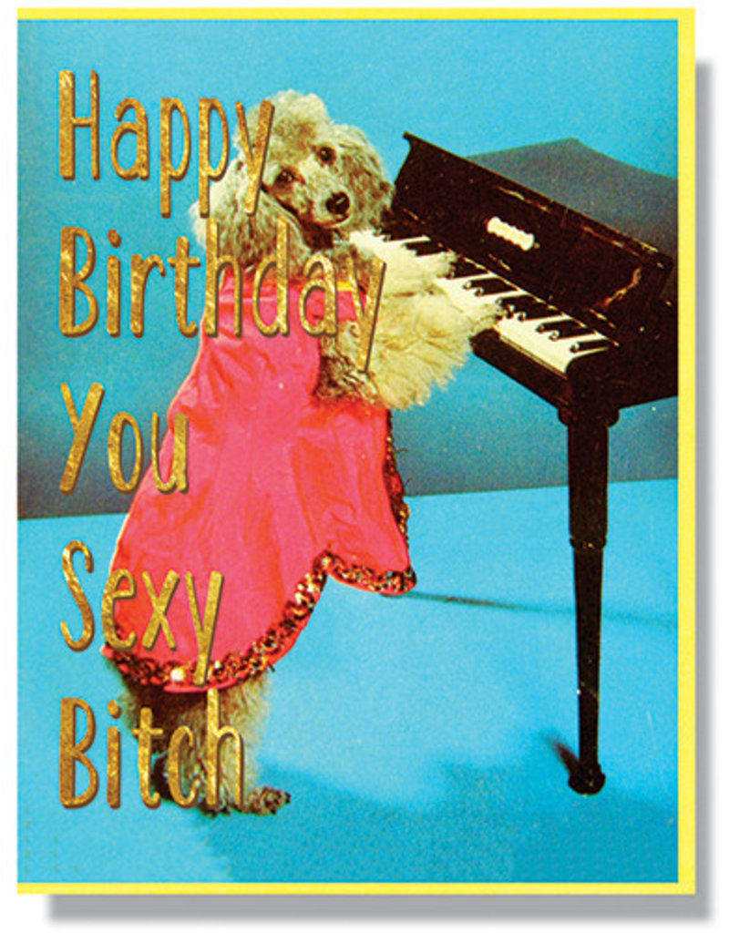 Smitten Kitten Happy Birthday, You Sexy Bitch Greeting Card