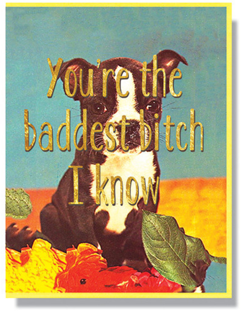 Smitten Kitten You're the Baddest Bitch I Know Greeting Card