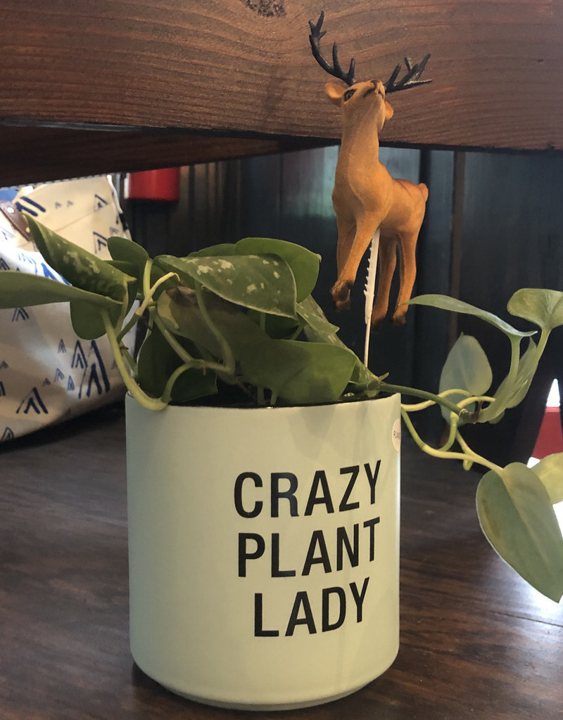 Say What? Crazy Plant Lady Planter
