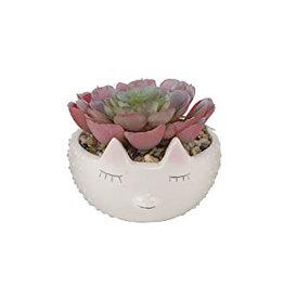 Flora Bunda Faux Succulent in Hedgehog Ceramic Planter