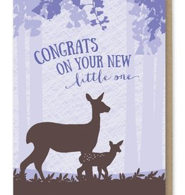 Congrats on Your New Little One Greeting Card