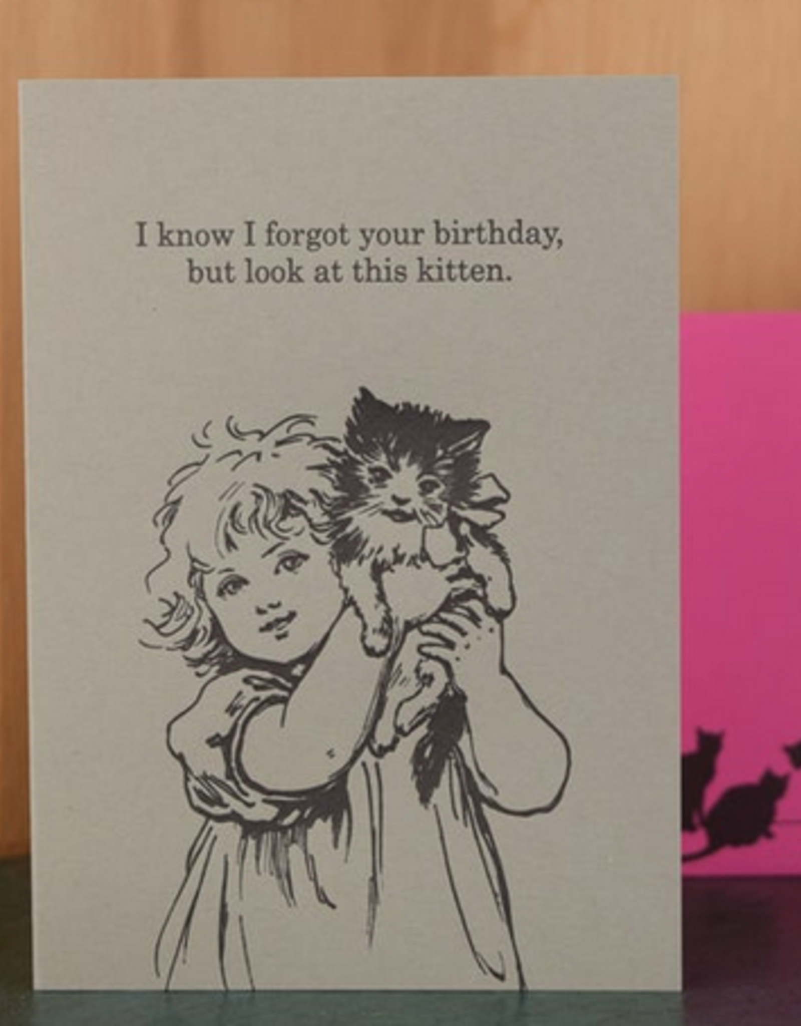 I Know I Forgot Your Birthday, But Look At This Kitten Greeting Card
