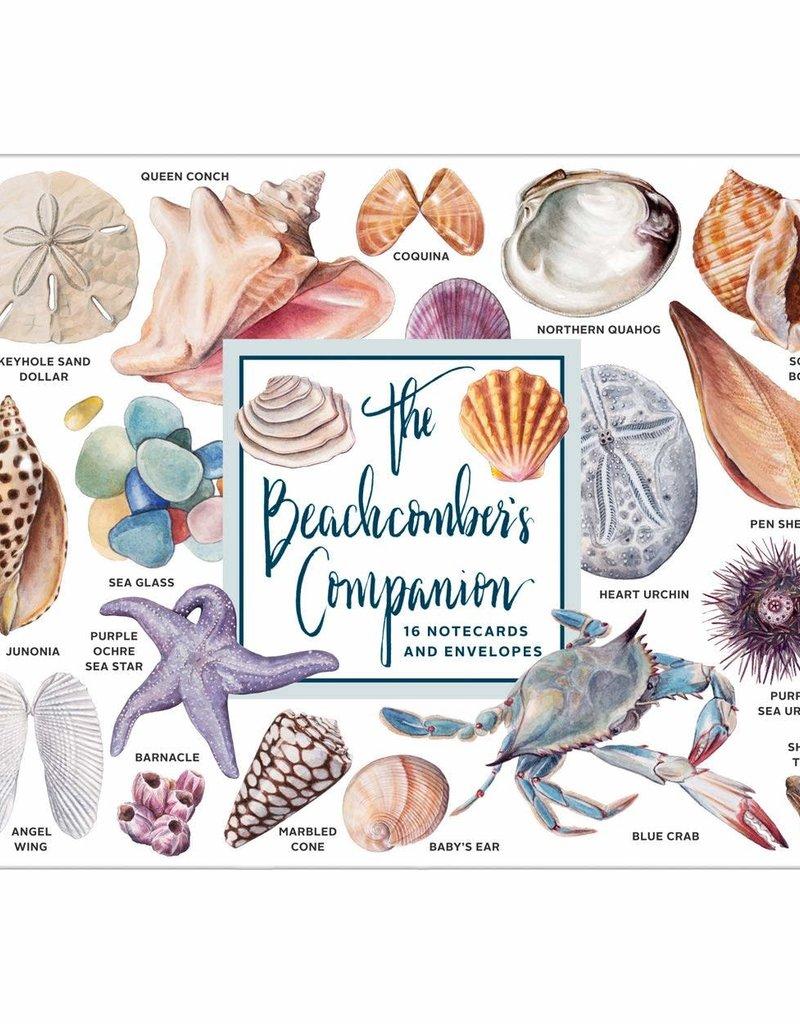 Galison Beachcomber's Companion Shells Notecard Set
