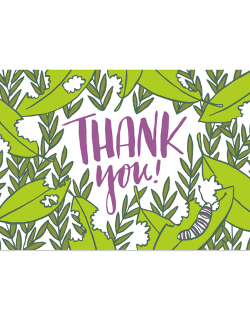 Frog & Toad Press Thank You! Postcard