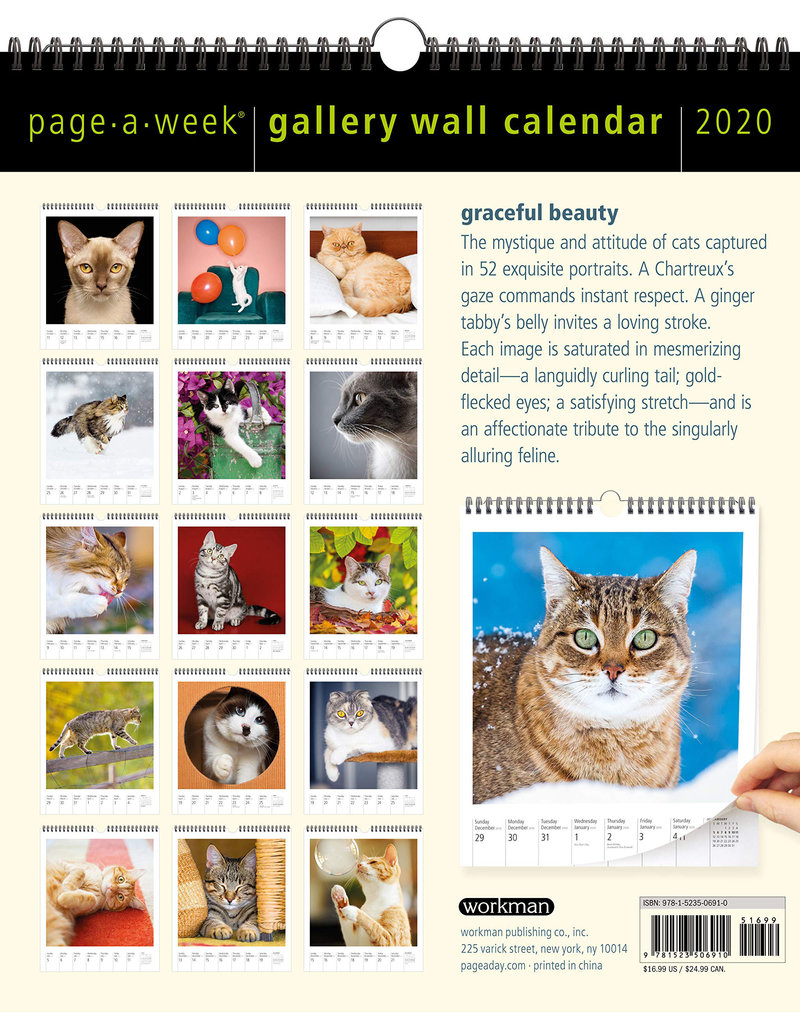 Workman Publishing Group Cat Page-A-Week Wall Calendar 2020