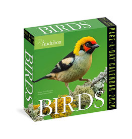 Workman Publishing Group Audubon Birds Pad Calendar 2020