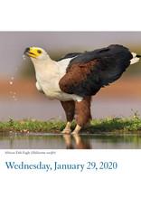 Workman Publishing Group Audubon Birds Pad Calendar 2020