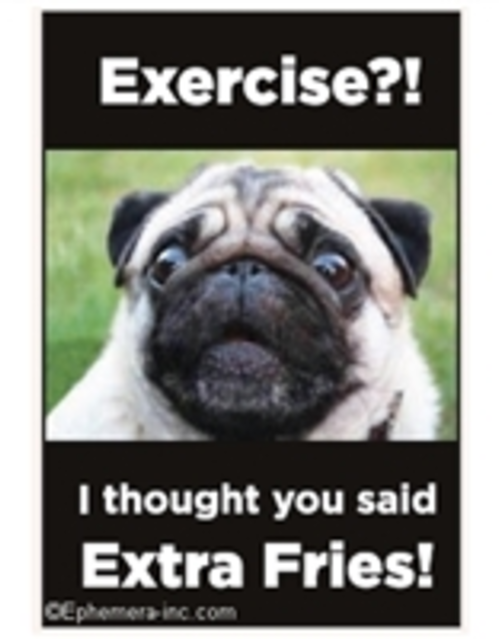 Exercise?! I Thought You Said Extra Fries Magnet