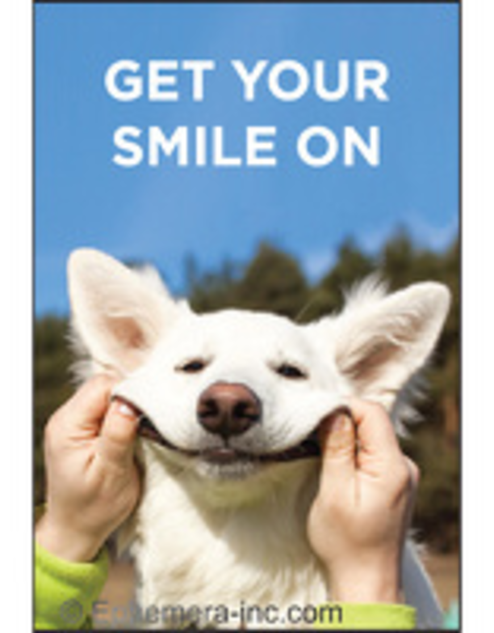 Get Your Smile On Magnet
