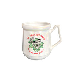 Sojourn Souvenirs Massachusetts Luster Mug