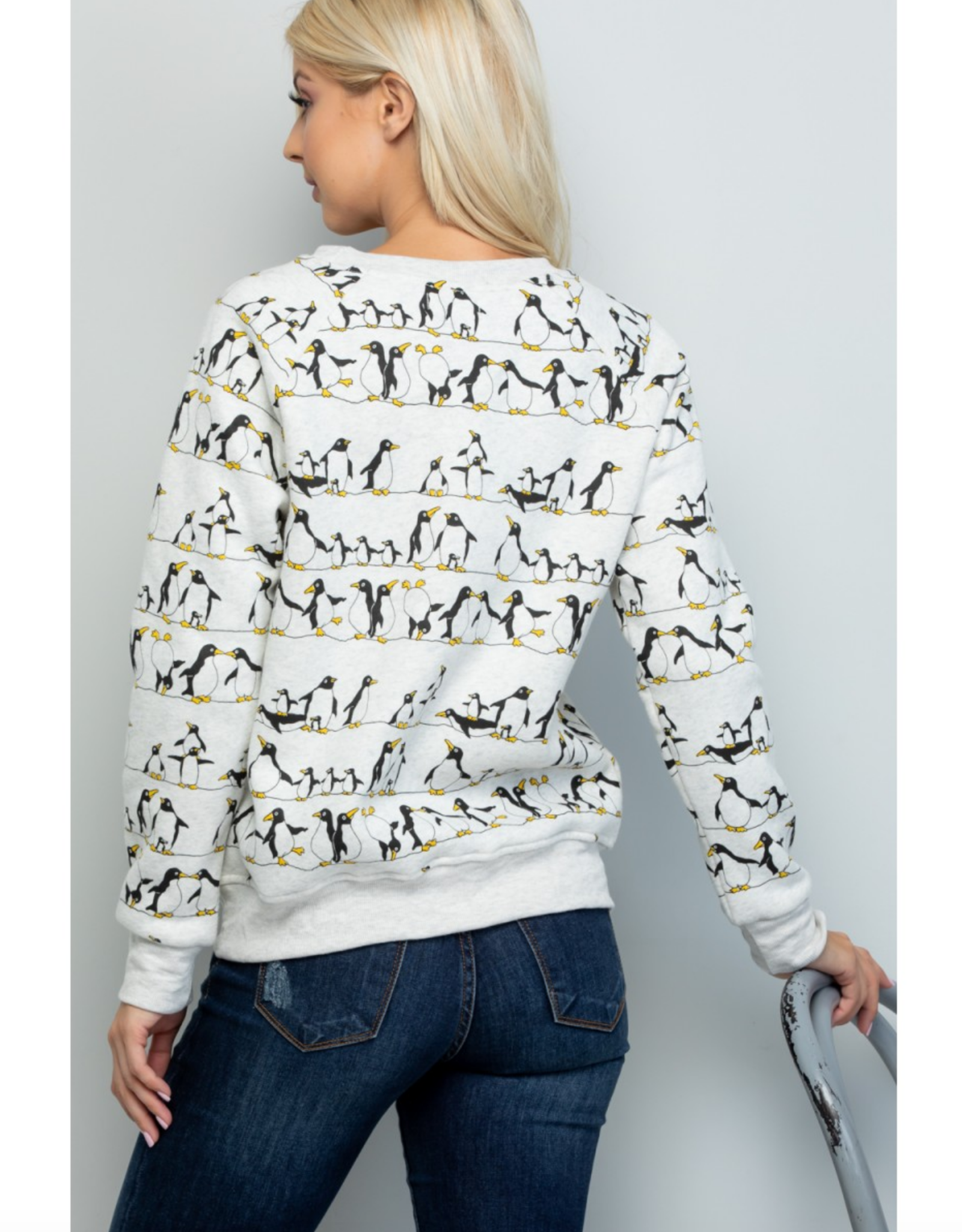 Penguins on a Wire Sweatshirt