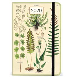 Cavallini 2020 Weekly Planner - Ferns