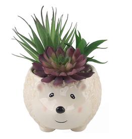 Hedgehog Ceramic Succulent Planter