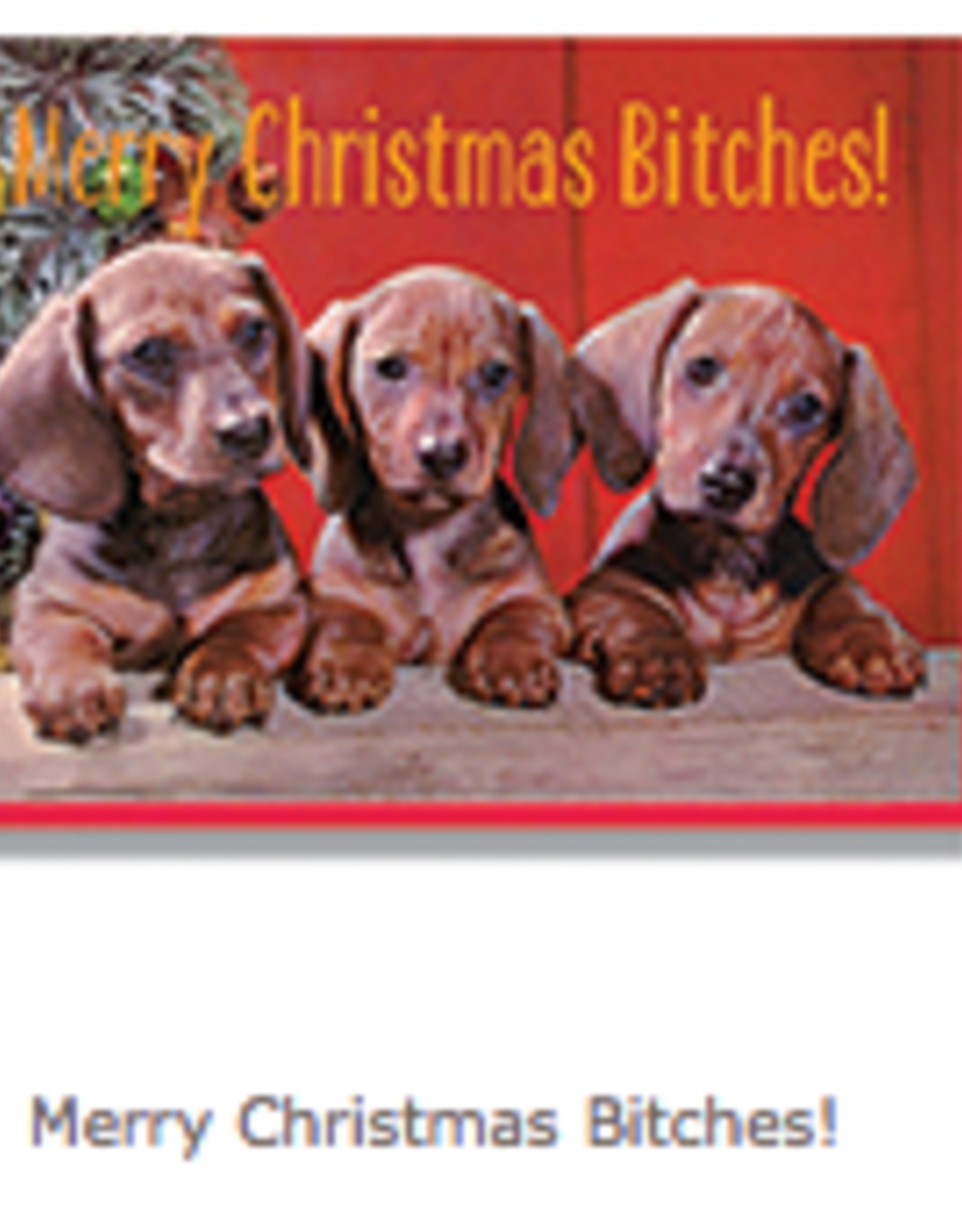 Merry Christmas Bitches Greeting Card