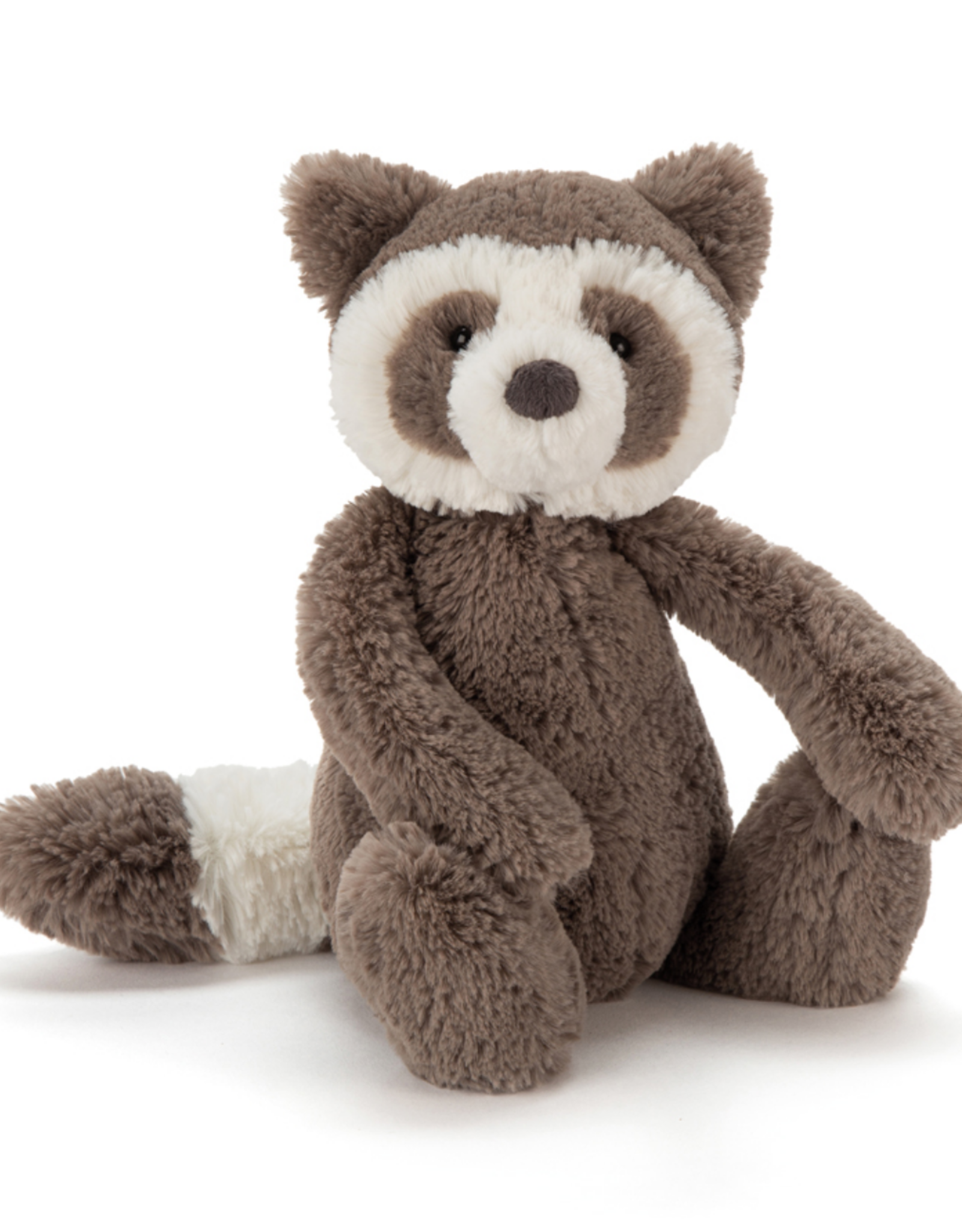 Bashful Raccoon Medium