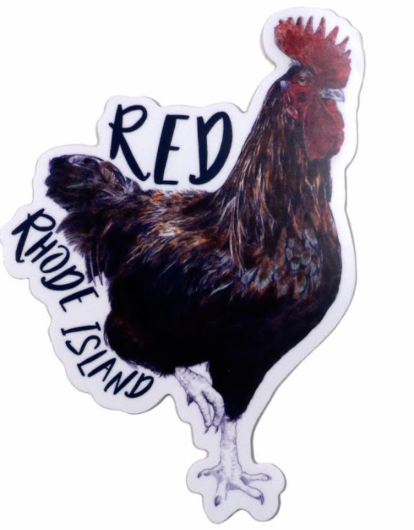 Embee Studio Rhode Island Red Sticker