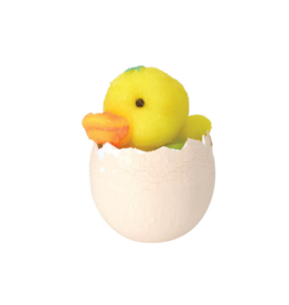 Toysmith Hatchin' Grow Duck