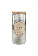 Modern Sprout Eco Planter - Mint