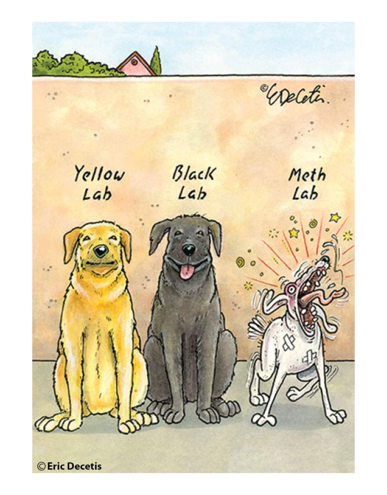 Yellow Lab, Black Lab, Meth Lab Magnet