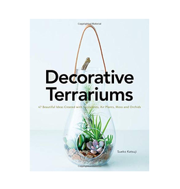 Decorative Terrariums