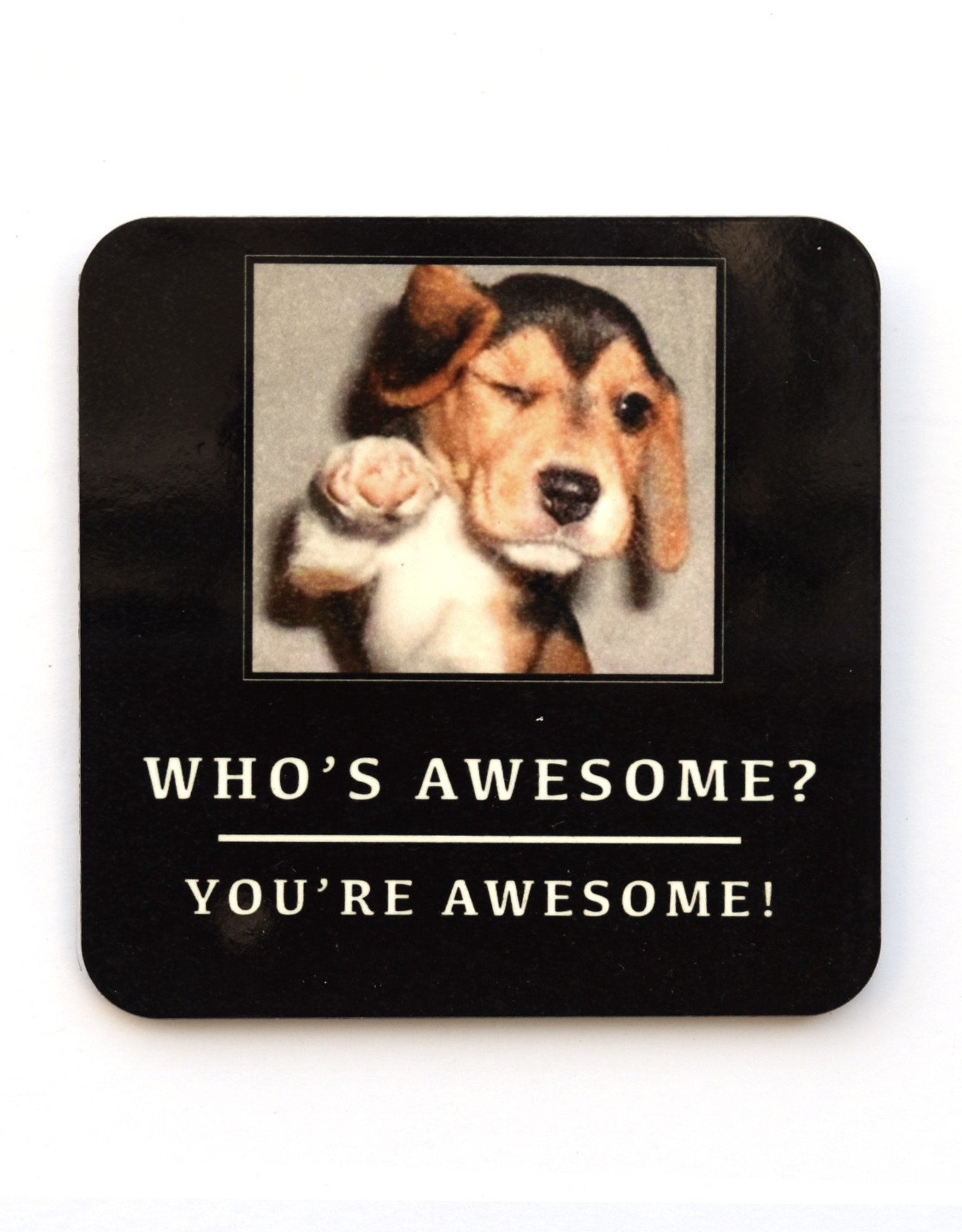 Who's Awesome? Dog Coaster