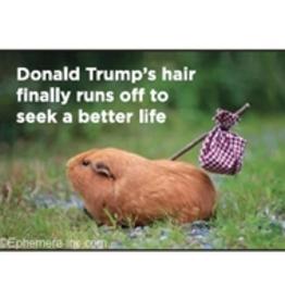 Donald Trump's Hair Finally Runs Off... Magnet