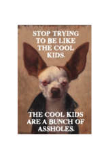 The Cool Kids are Assholes Magnet
