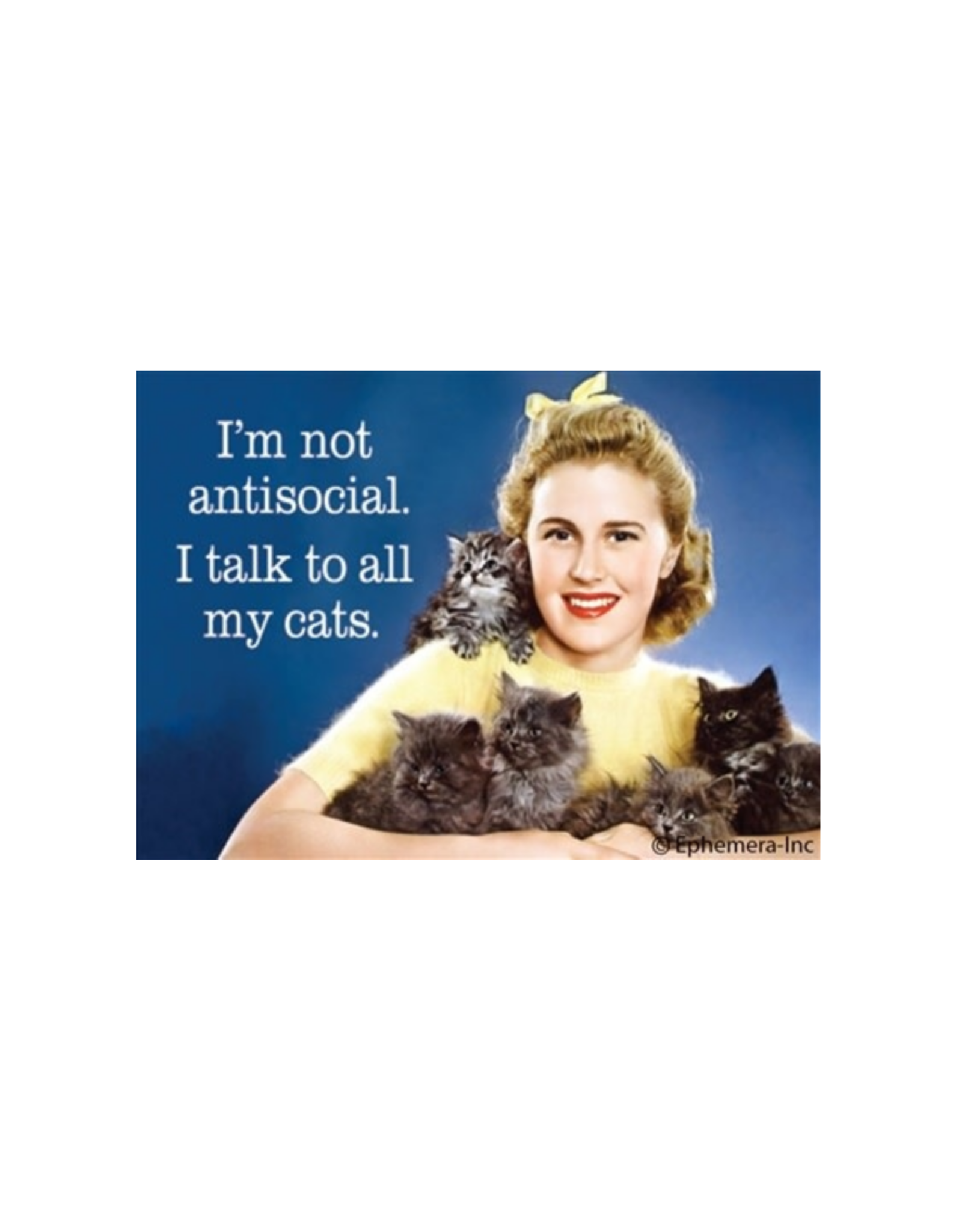 Not Antisocial. I Talk to My Cats Magnet