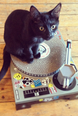 DJ Cat Scratcher