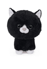 Pet Shop Stray Black & White Cat