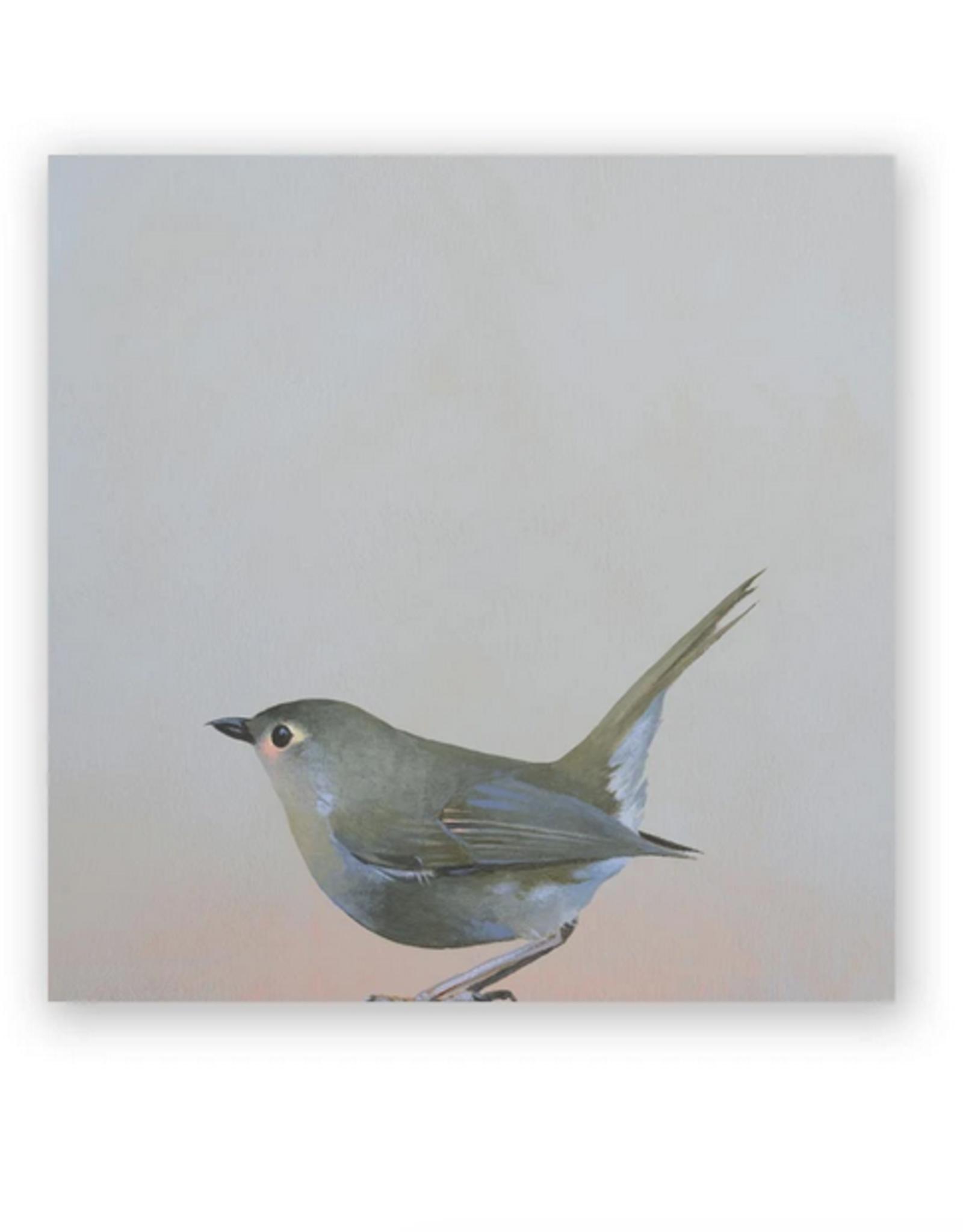 Wings on Wood - Fictional Robin