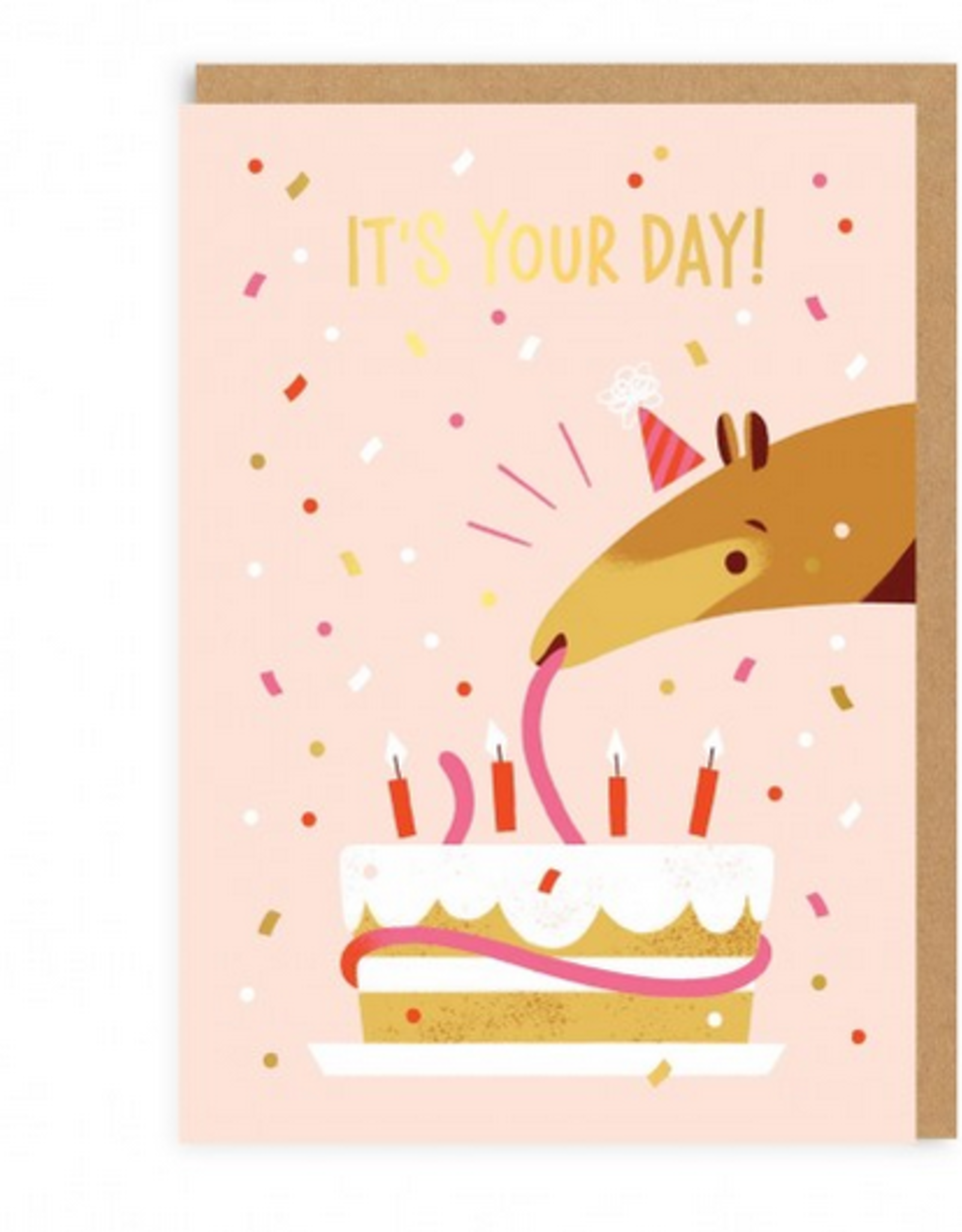 It's Your Day (Anteater) Greeting Card
