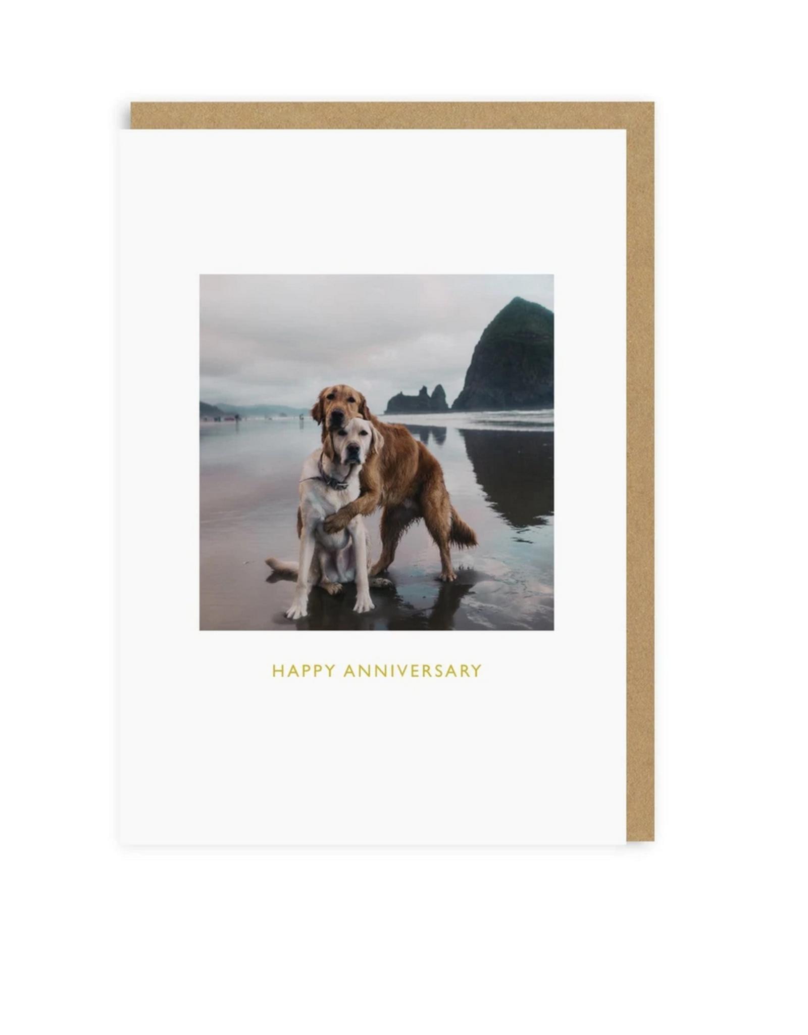 Happy Anniversary Beach Dogs Greeting Card