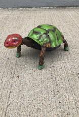 Longneck Turtle