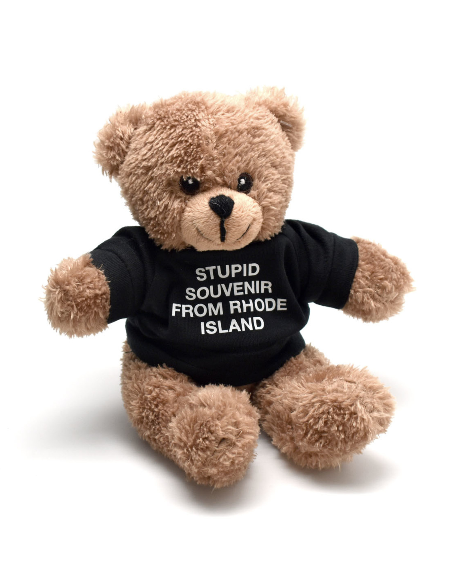 A Stupid Souvenir From Rhode Island Teddy Bear