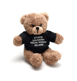 A Stupid Souvenir From Rhode Island Teddy Bear