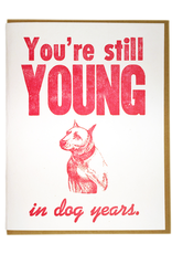 Still Young in Dog Years Greeting Card