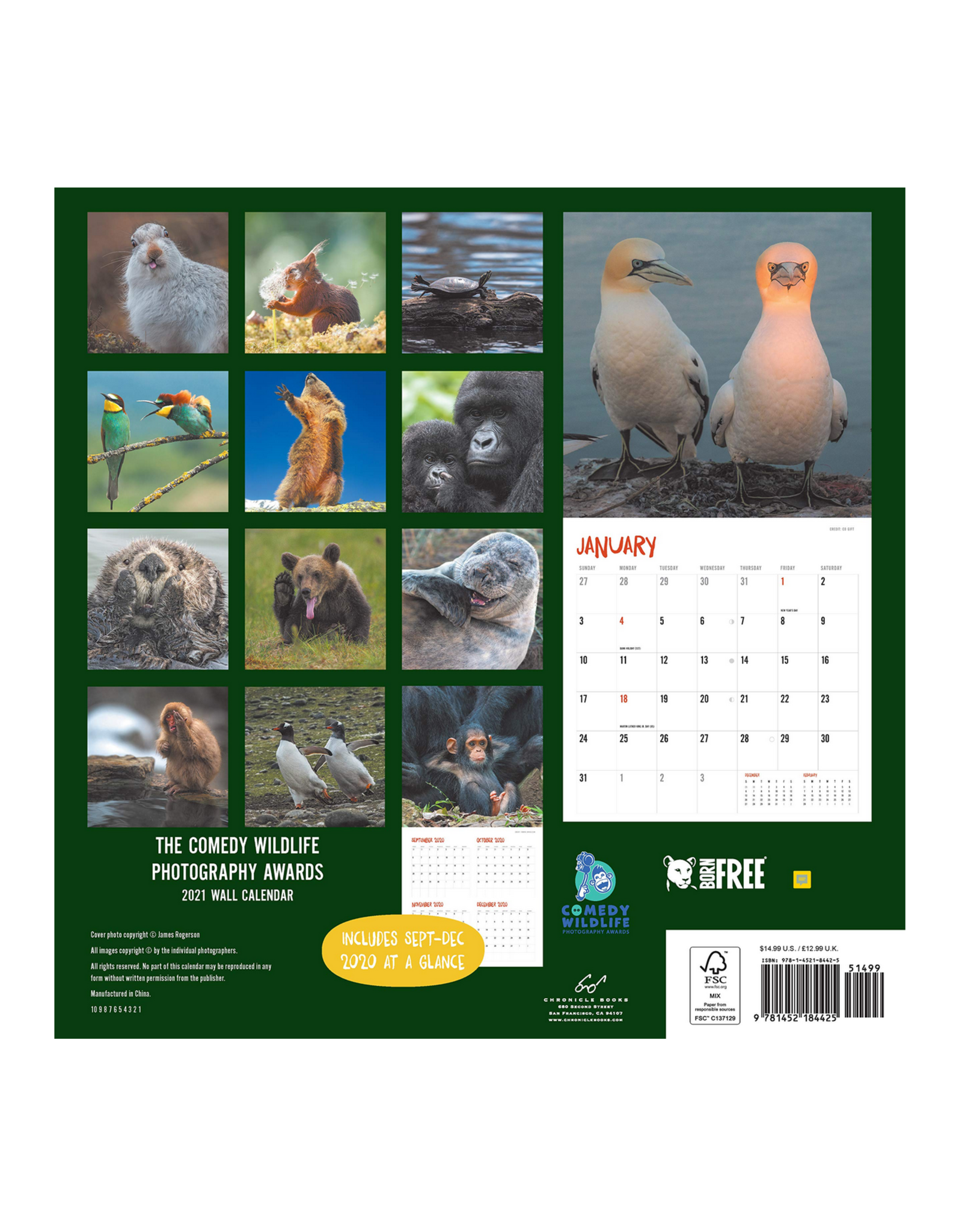 Comedy Wildlife Wall Calendar 2021