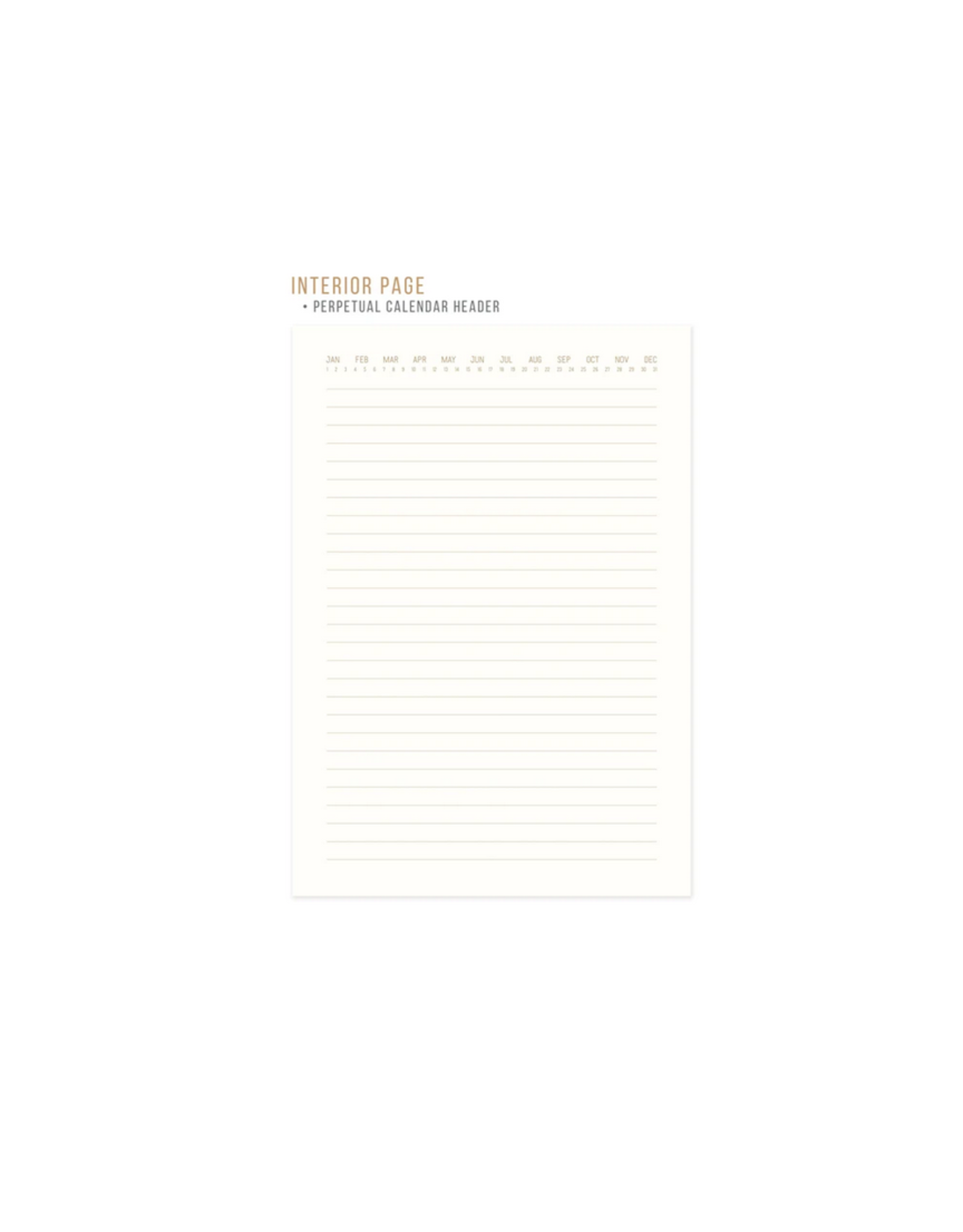 Radiant Suns Suede Journal - Ochre